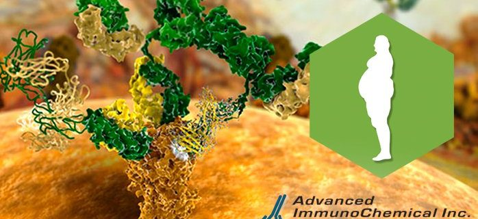 Adiponectin: diagnostic marker of type 2 diabetes and cardiovascular diseases.