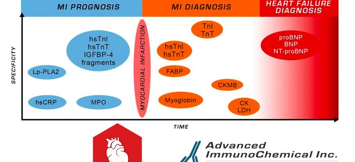 Biomarkers of Myocardial Infarction: 18 antibodies and antigens for diagnosis and prognosis.