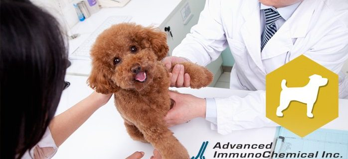 Veterinary Diagnostics: antibodies and antigens for immunoassay development for several animal diseases from Advanced ImmunoChemical.