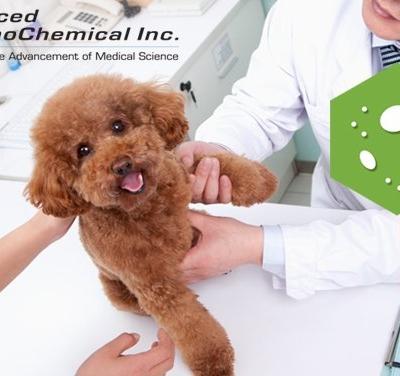 New! Recombinant Canine Parvovirus VP2 ProteinNew! Recombinant Canine Parvovirus VP2 Protein