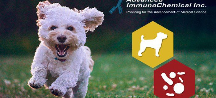 New! Recombinant Canine Parvovirus VP2 Protein